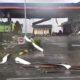 Angin Puting Beliung di Tongas Tewaskan Pemotor