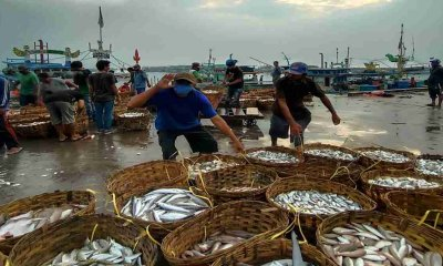 Jelang Ramadhan, Harga Ikan Laut di Kota Probolinggo Mulai Naik